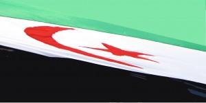 Bandera viento 1 copia